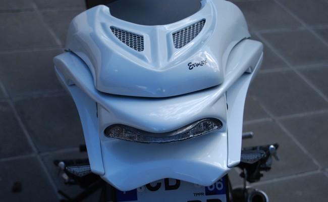 Hornet 600 EVO 1